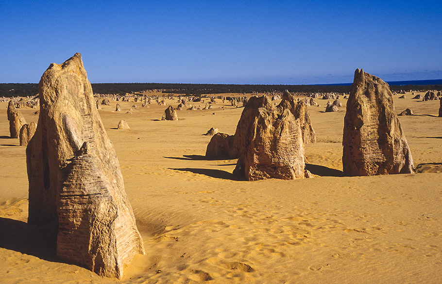 Pinnacles Nambung Western Australia