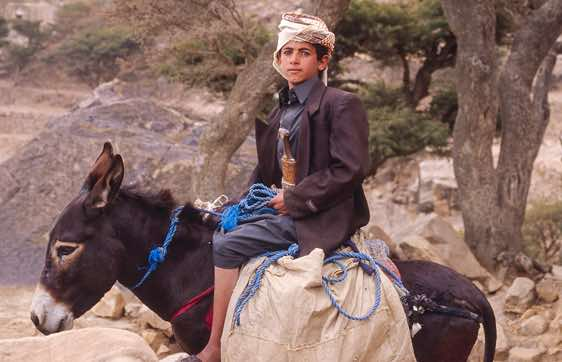 A boy on a donkey proudly wears his jambiya, a short dagger traditionally worn by men in Yemen